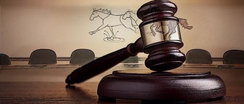 Horse and Gavel